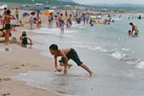 賀露海水浴場