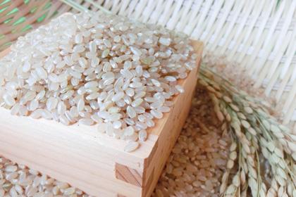 安心のおいしい鳥取米