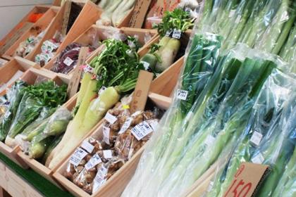 鳥取の新鮮農産品